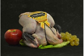 Poulet de challans - label rouge