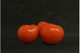 Tomates nantaises